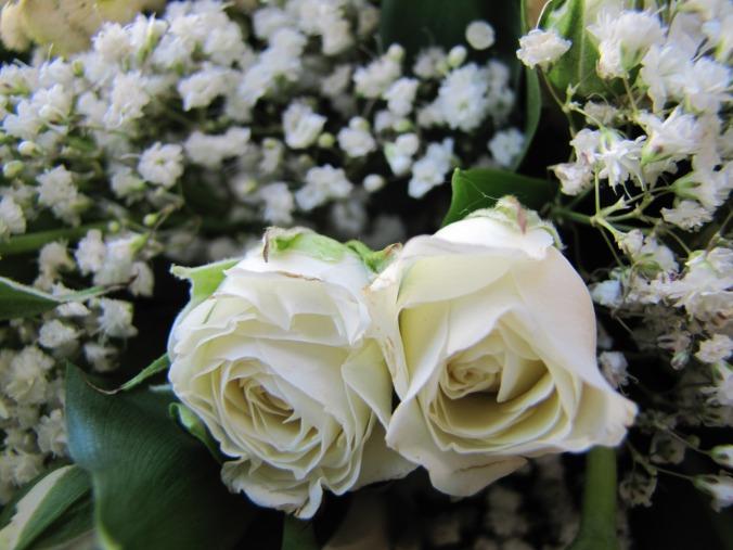 flower_rose_green